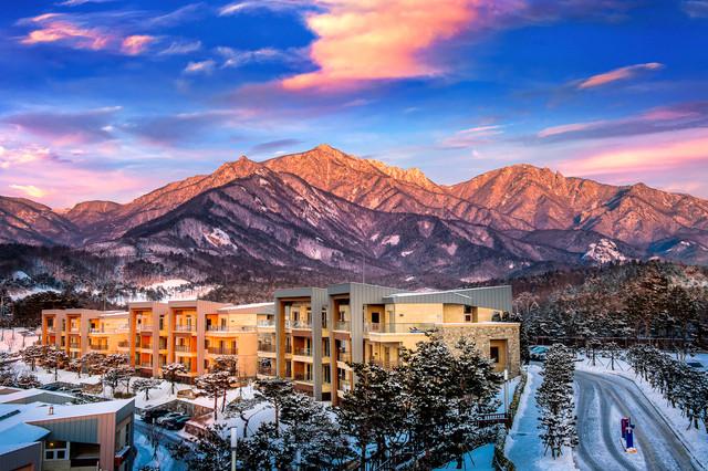 Korea-Winter-Express-Plus-Illumination-Festival-Seoraksan-National-Park