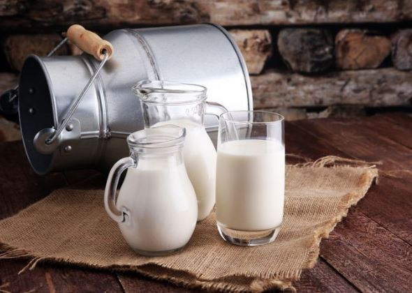 Manfaat Susu Kambing Etawa untuk Kecantikan