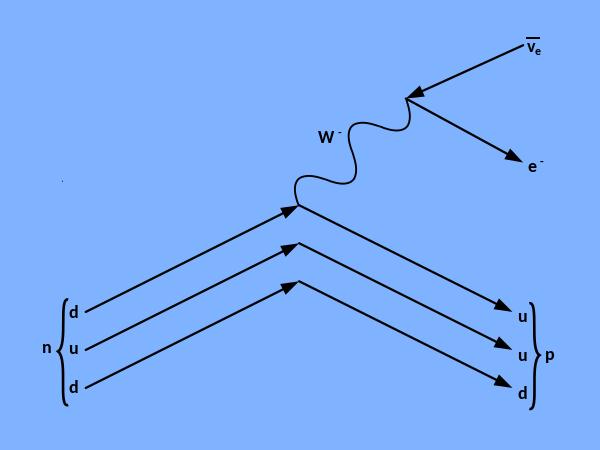 600px-Feynmann-Diagram-beta-minus-decay-svg