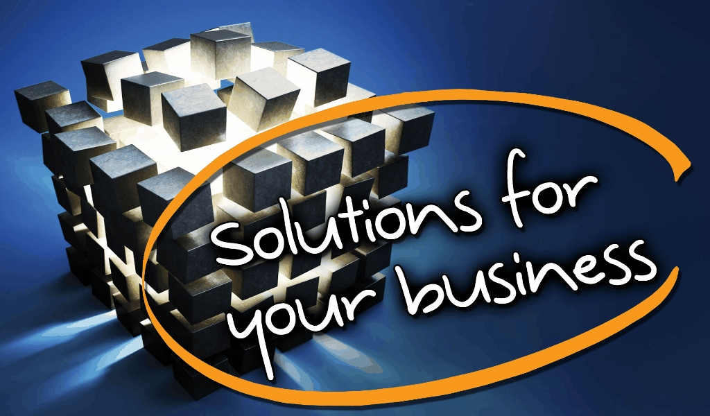 Business Solution Consultant