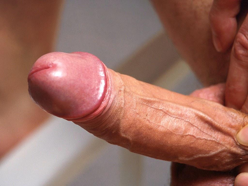 [Image: cock-hard-download-8.jpg]