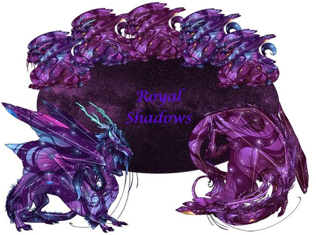 Royal-Shadows.jpg