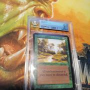 [VDS] Magic the Gathering - cartes gradées, classeur, boosters. IMG-20210208-000314