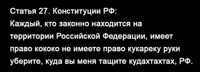 https://i.ibb.co/jgnxvqX/48bfcb25dd11d8b60c36f50eef2624db.jpg