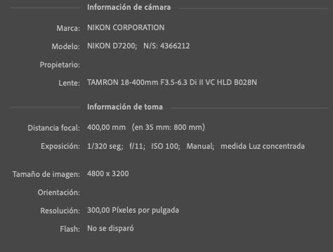 Captura-de-pantalla-2021-06-24-a-las-23-