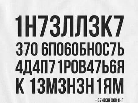 105893679-2595049487480030-7406001275272701547-n.jpg
