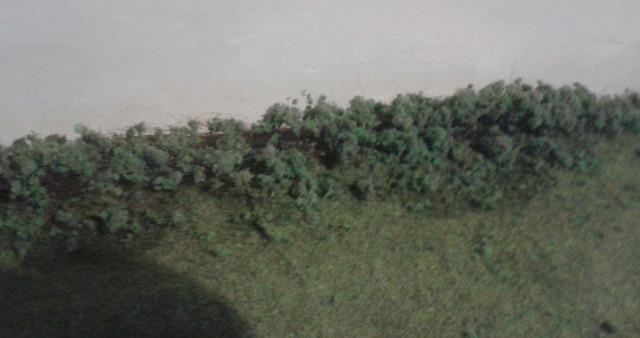 Gantsville bushes