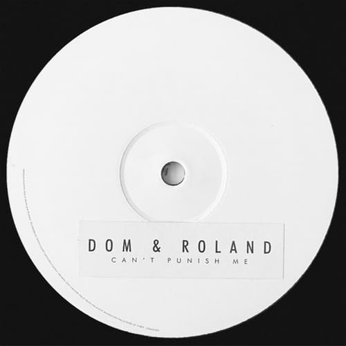 Download Dom & Roland - Can't Punish Me EP mp3