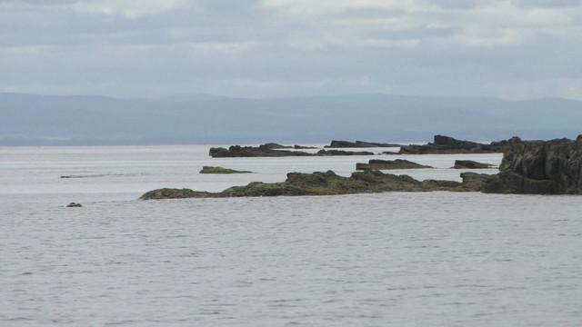 moray-3-dornoch-and-dolphins-Still033