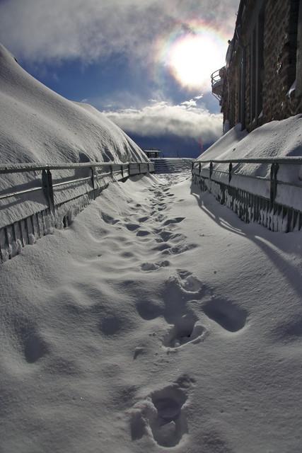 01 fd neige