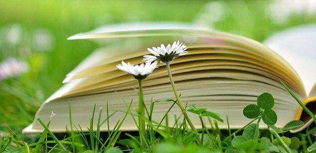 book-2304389-640