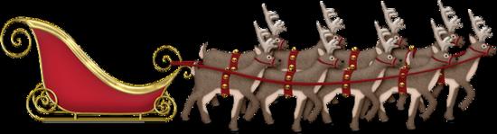 traineau-tiram-156