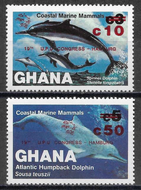 Wale-Ghana-1039