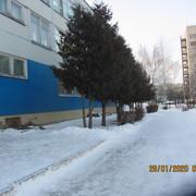 IMG-6872