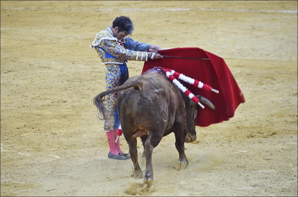 Jose-Tomas-0677