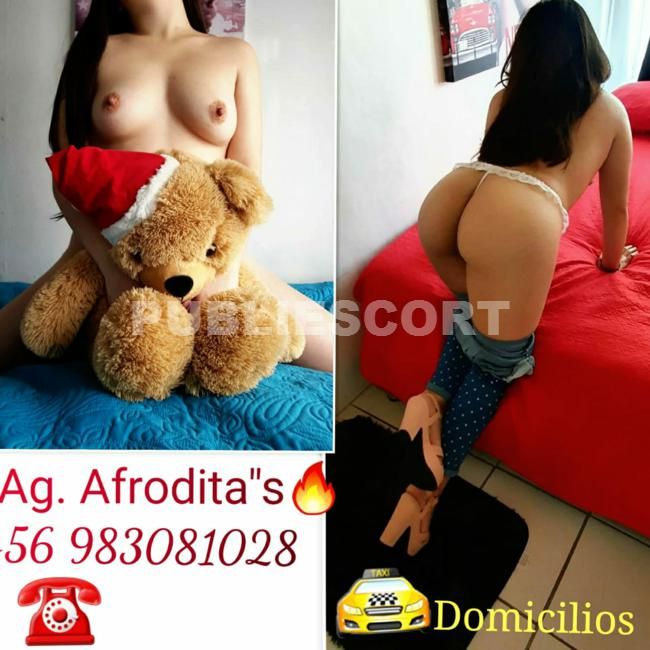 agencia-2