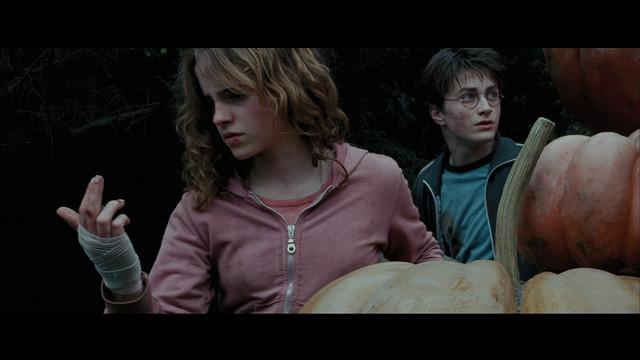 harrypotter4-moviescreencapscom-13292