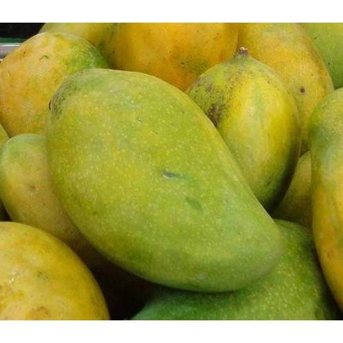 [Image: mango-langra-500x500.jpg]