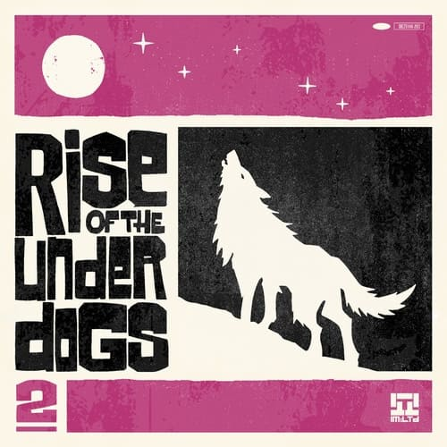 Download VA - Rise Of The Under Dogs 2 mp3