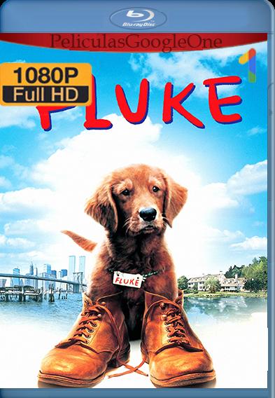 Fluke (1995) HD [1080p] Latino [GoogleDrive] | Omar |