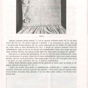 111-lpp