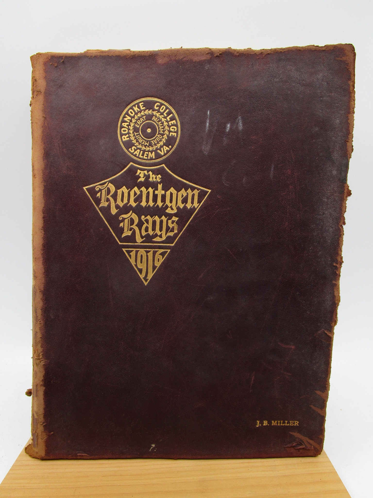 Image for The Roentgen Rays 1916 (First Edition)