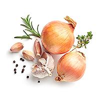 Zasady diety cebulowej