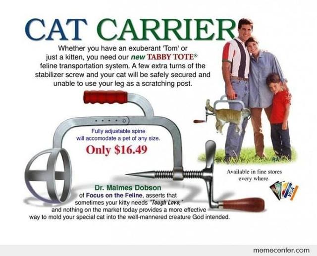 Katten-kradser