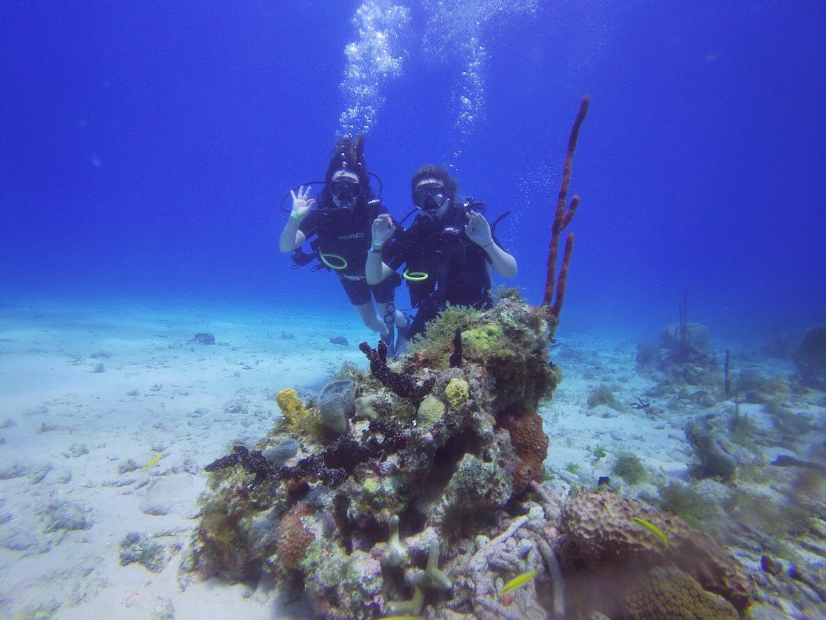 Open Water Diver Punta Cana