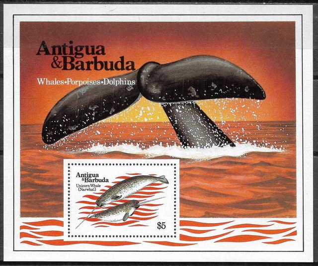 Wale-Antigua-718