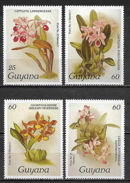O Guyana 1377