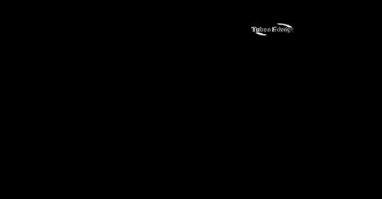 traineau-tiram-193