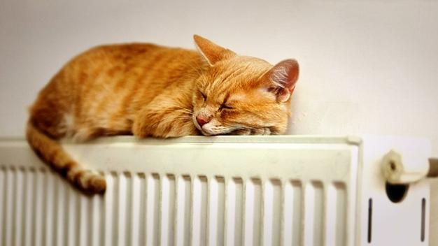 Легкий спосіб відрегулювати оптимальну температуру