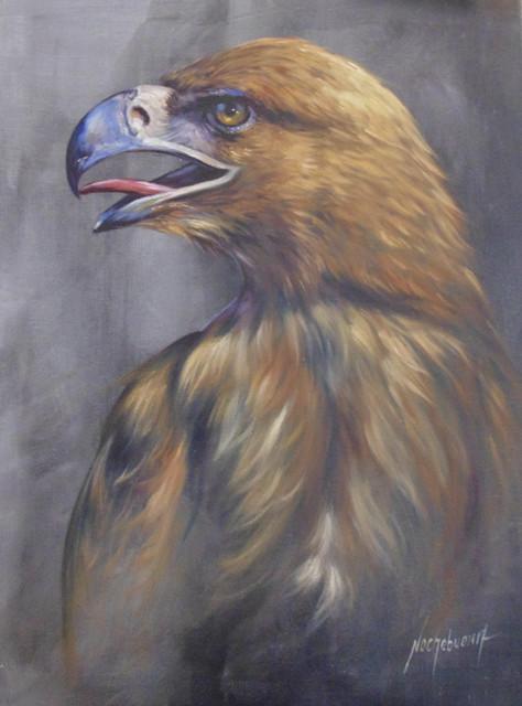 2-Aguila-Mexicana-Tecnica-Mixta