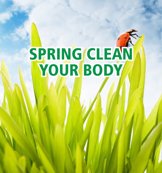 spring-clean-body