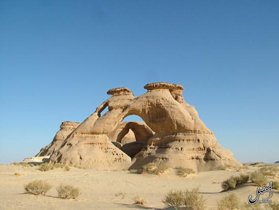 Dakar2020 - 2020 42º Rallye Raid Dakar - Arabia Saudí [5-17 Enero] - Página 8 5555