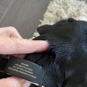 Адресник для собак 19mm black