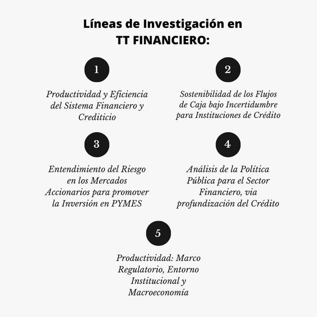 Lineas-de-Investigacion-tt-1.png