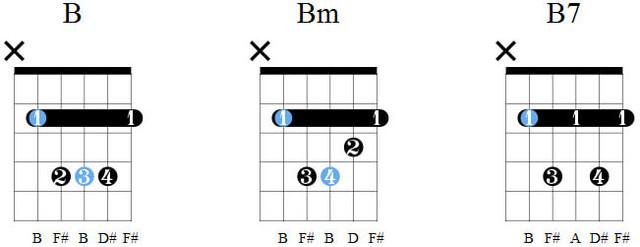 Аккорды B, Bm, B7
