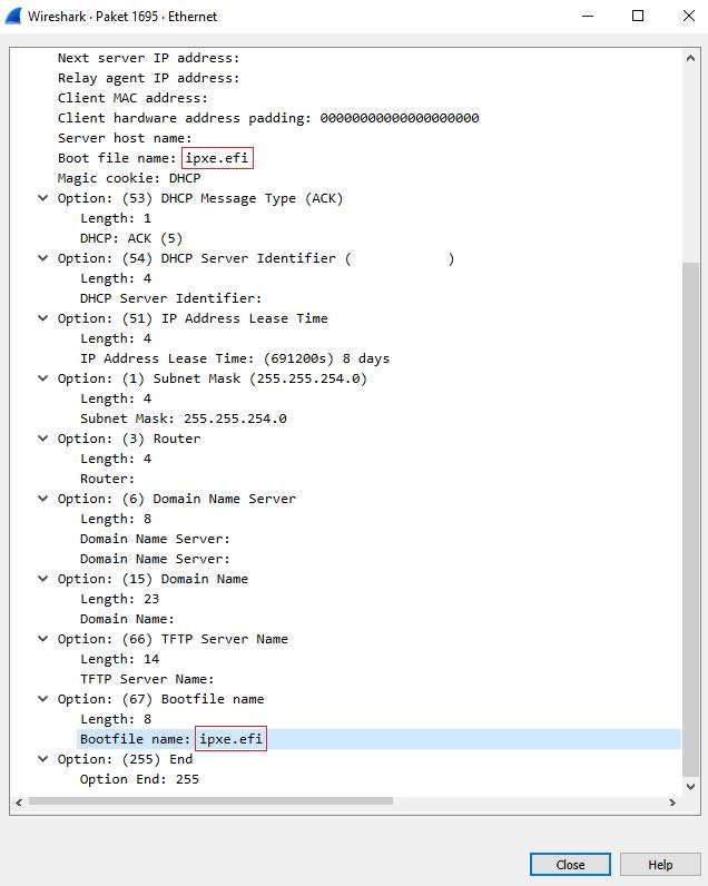 wireshark dhcp testing