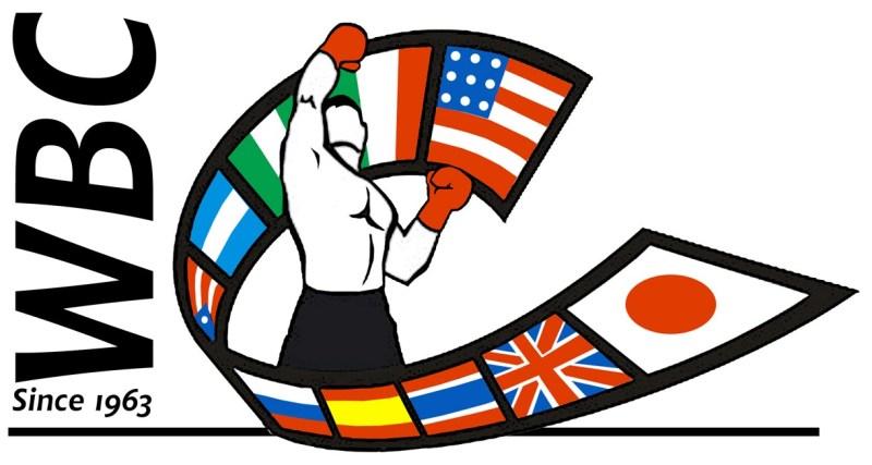descargar Boxeo WBC Campeonato Semi Pesado CMB/Peso Welter CMB (2019)[HDTV 720p][Español][VS] gratis