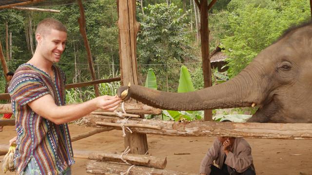 Chiang-Mai-Elephant-Sanctuary