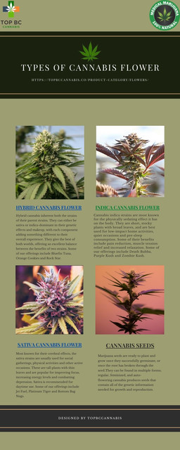 types-of-cannabis-flower
