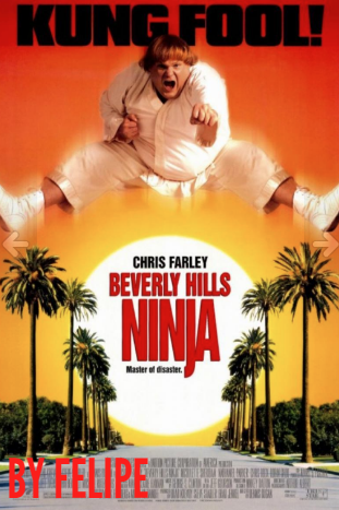 Beverly Hills Ninja(1997) [1080p] [Latino] [Google Drive](Enlace propio)