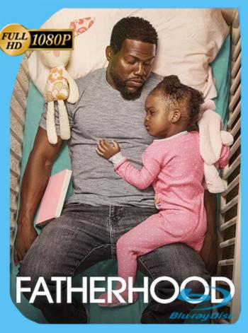 Paternidad (2021) NF WEB-DL [1080p] Latino [GoogleDrive]