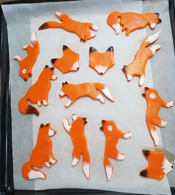 狐狸 Image