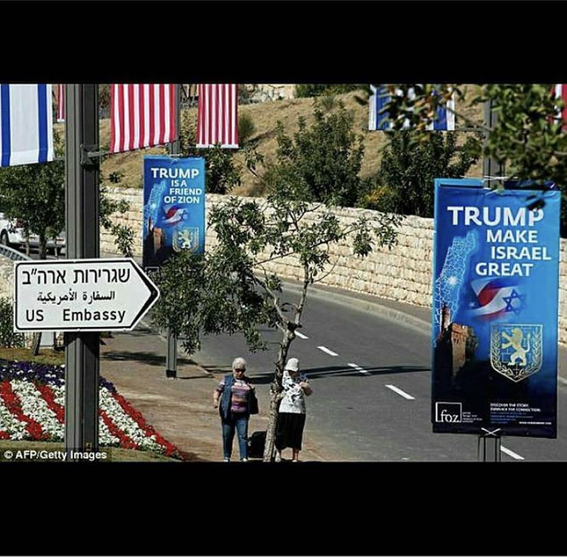 Jews Love Donald Trump, King of Israel