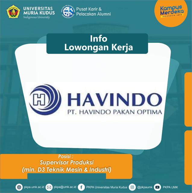 havindo1