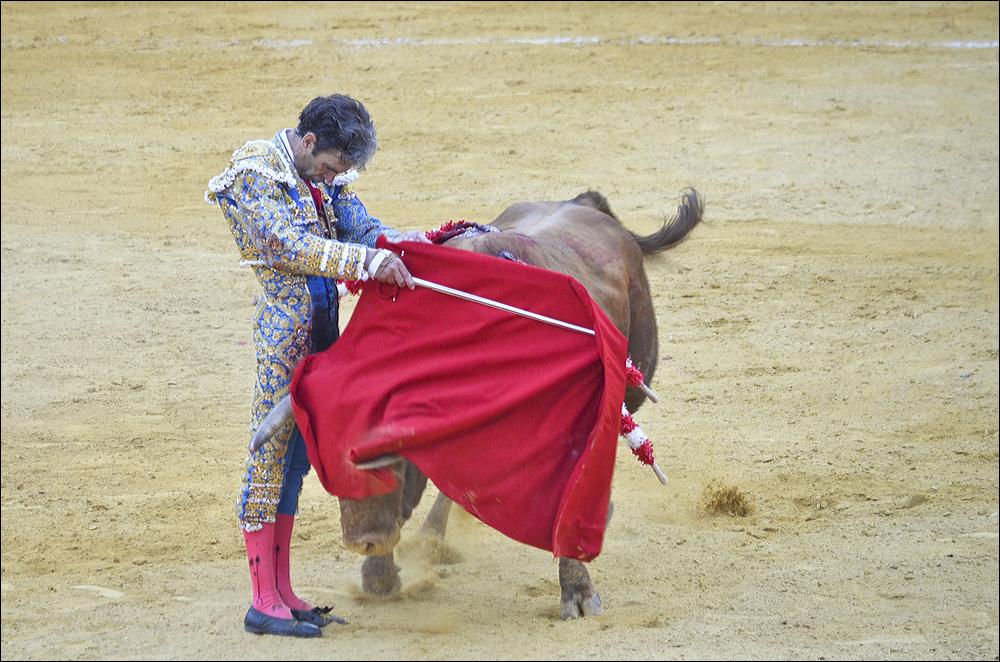 Jose-Tomas-0679