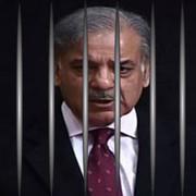لاہور ہائیکورٹ نے منی لانڈرنگ کیس میں شہبازشریف کو مرکزی ملزم قراردے دیا